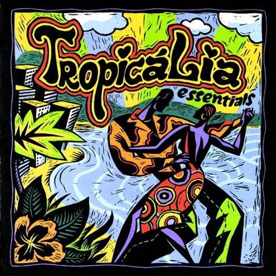 Tropicalia Essentials