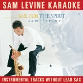 Sam Levine Karaoke - Sax for the Spirit (Instrumental Tracks Without Lead Sax)