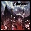 Shinedown - Save Me Mp3