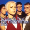 Bualadh Bos - The Cranberries Live, The Cranberries