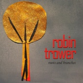I Believe to My Soul - Robin Trower