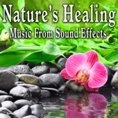 Nature's Healing: Music from Sound Effects