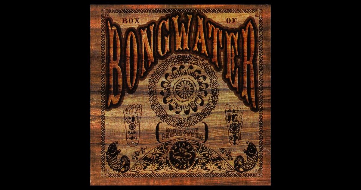 Amazoncom Bongwater Luke Wilson Alicia Witt Amy