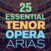 25 Essential Tenor Opera Arias, Songs & Duets with  from Mozart, Puccini, Bizet, Verdi, Donizetti & More