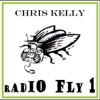 Radio Fly 1