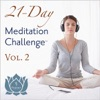 Day One, Welcome to the 21-Day Meditation Challenge! - Single