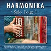 Harmonika Solo - Folge 1