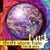 Thrift Store Halo