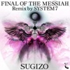 Final of the Messiah (Remix By System 7) - Single ジャケット写真