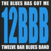The Blues Has Got Me