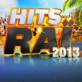 Hits Raï 2013