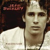 Hallelujah (Live At Bearsville) - Single, Jeff Buckley
