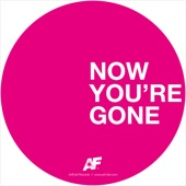 Now You're Gone - EP