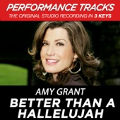 Better Than a Hallelujah (Performance Tracks) - EP
