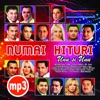 Manele Hits, Vol. 1, Various Artists