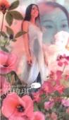 Christine Fan - 最初的夢想 artwork