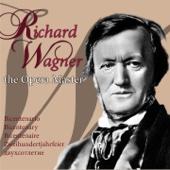 Richard Wagner, the Opera Master (Bicentenario, Bicentenary, Bicentenaire, Zweihundertjahrfeier, двухсотлетие)
