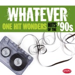 Whatever: One Hit Wonders of the