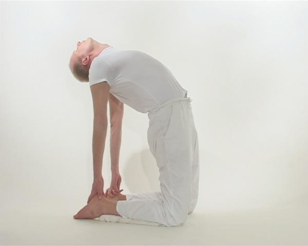 Podyoga Yoga for Life