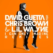 I Can Only Imagine (feat. Chris Brown & Lil Wayne) - Single