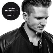 Identity - Ondrej Brzobohaty