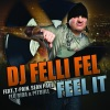 Feel It (feat. T-Pain, Sean Paul, Flo Rida & Pitbull) - Single, DJ Felli Fel