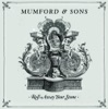 Roll Away Your Stone - Single, Mumford & Sons