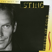 Sting - Fields of Gold bild