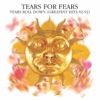 Everybody Wants to Rule the World - Tears for Fears mp3