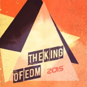 The King of EDM 2015 (100% Ibiza Dance 101 Songs Dance Electro House Minimal Dub the Best of Compilation for DJ)