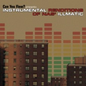 Can You Flow? Presents Instrumental Renditions of Nas' Illmatic
