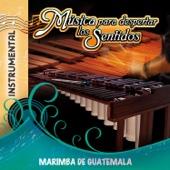 Música para Despertar los Sentidos - Marimba de Guatemala - Marimba Chapinlandia & Checha y Su India Maya
