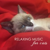 Relaxing Music for Cats - Soothing Classical Songs and Ambient Nature Sounds for Pet Therapy