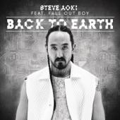 Back To Earth (Remixes) - Single