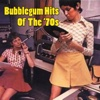 Bubblegum Hits Of The '70s (Re-Recorded Versions)