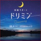 Sleep Support (Dreamin) Healing, Vol. 1 Melody of Natural Environmental Sounds