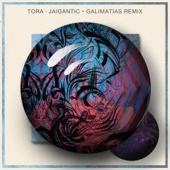 Jaigantic (Galimatias Remix)