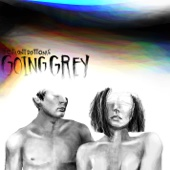 The Front Bottoms - Going Grey  artwork