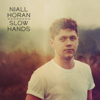 Download Slow Hands - Niall Horan Video