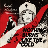 Snoh Aalegra - Nothing Burns Like the Cold (feat. Vince Staples) Grafik