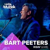 Bart Peeters - Risin' (Uit Liefde Voor Muziek) [Live] artwork