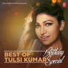 Best of Tulsi Kumar Birthday Special