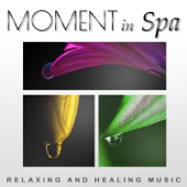 Moment in Spa: Relaxing and Healing Music – Deep Meditation, Harmony with Body and Soul, Tibetan Sounds, Relax in Spa