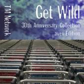 TM NETWORK - Get Wild (Dave Rodgers Remix) artwork