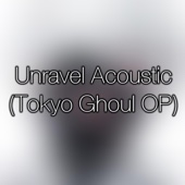 Unravel (Tokyo Ghoul OP (Acoustic) - Theishter