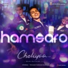 Hamsaro From Cheliyaa Single