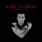Something's Gotten Hold of My Heart - Marc Almond & Gene Pitney