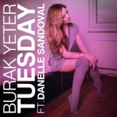 Burak Yeter - Tuesday (feat. Danelle Sandoval) [Manuel Riva Remix] artwork