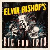 Elvin Bishop - Elvin Bishop's Big Fun Trio artwork