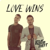 Love Wins - Love and Theft Cover Art